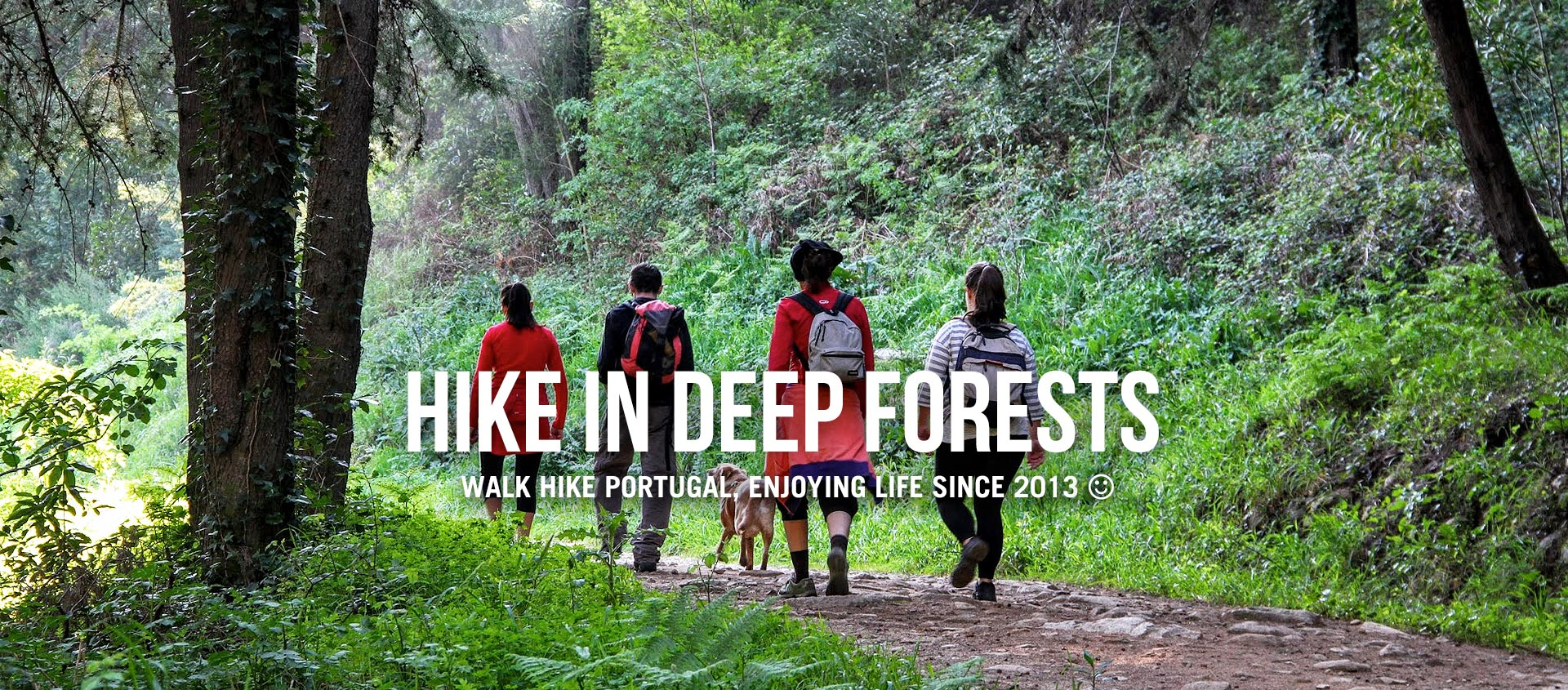 HIKE IN DEEP FORESTS