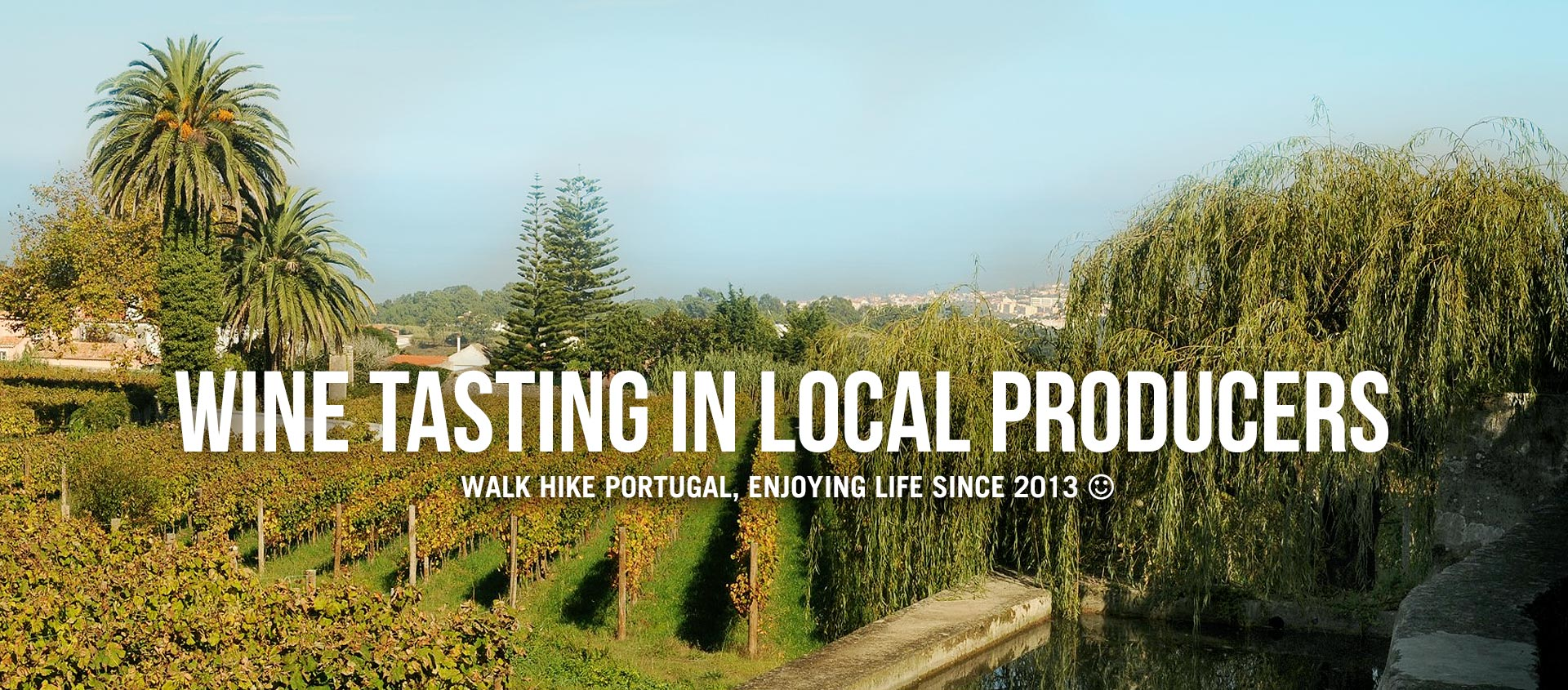 WINE TASTING IN LOCAL PRODUCERS