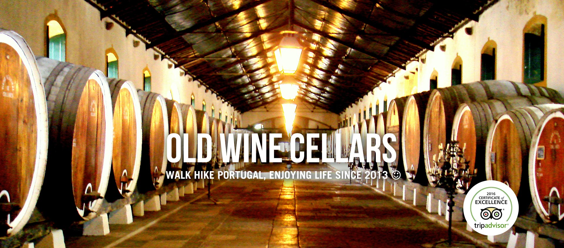 OLD WINE CELLARS