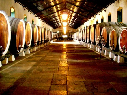 Sintra and the Wines of the Old World